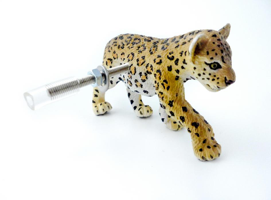 Boys Room Safari Leopard Cupboard Pull