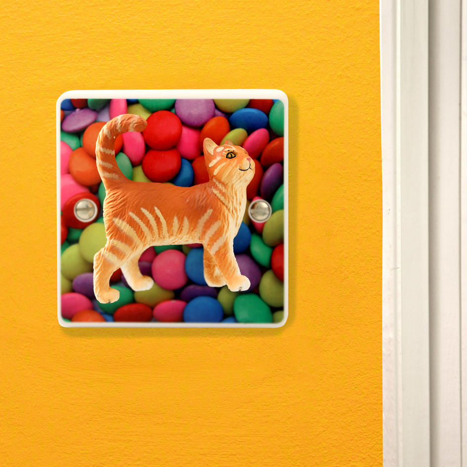 Novelty Cat Gift Light Switch for Children or Adults