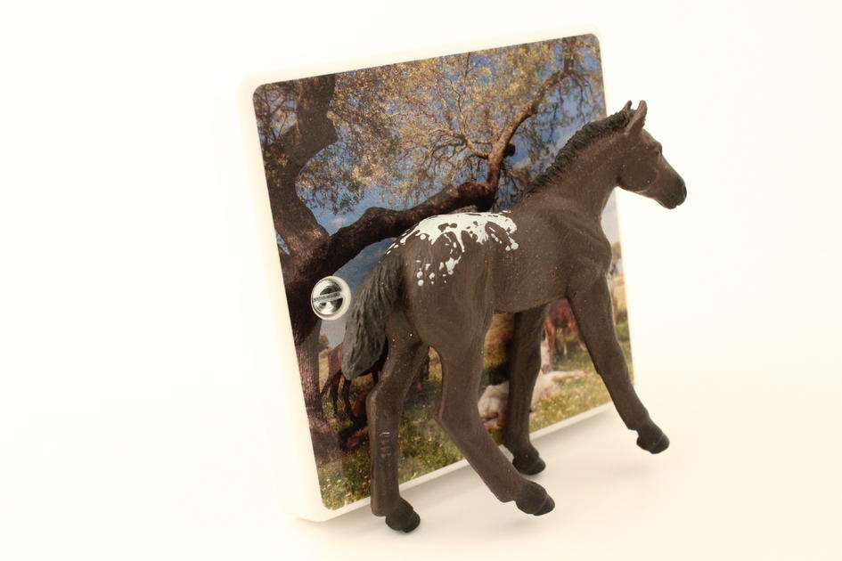 Girls Horse Themed Bedroom Decorative Dimmer Light Switch