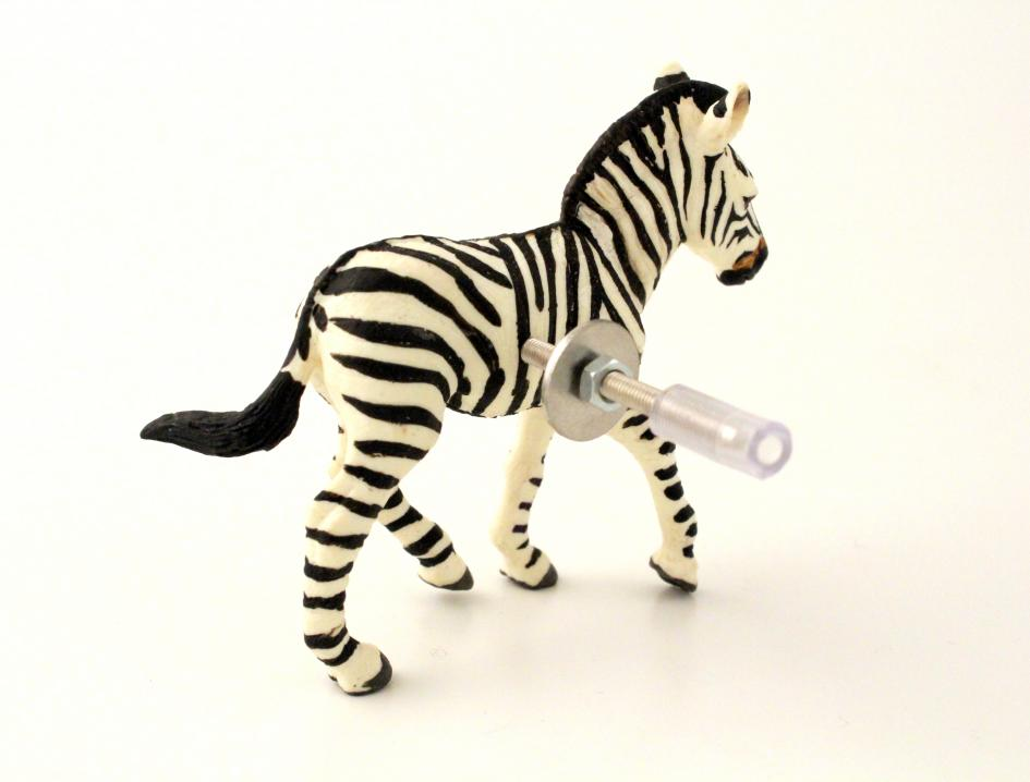 Safari Themed Bedroom Zebra Animal Cupboard Or Drawer Knob