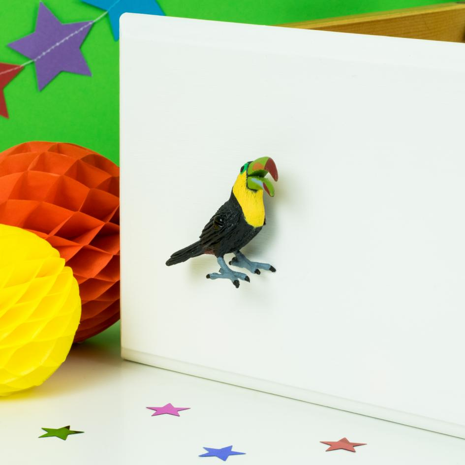 Toucan Cupboard or Drawer Knob for Kids Safari Themed Bedroom