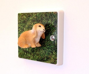Lop Eared Bunny Rabbit On The Grass Decorative Light Switch