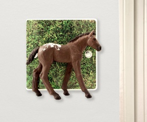 Appaloosa Foal Horse Light Switch for Girls Themed Bedrooms
