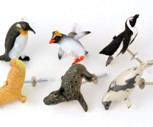 Arctic Animal Cupboard and Drawer Knobs - Set of Six Arctic Animals