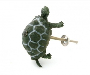 Tortoise Cupboard Knob Ideal for the Bathroom
